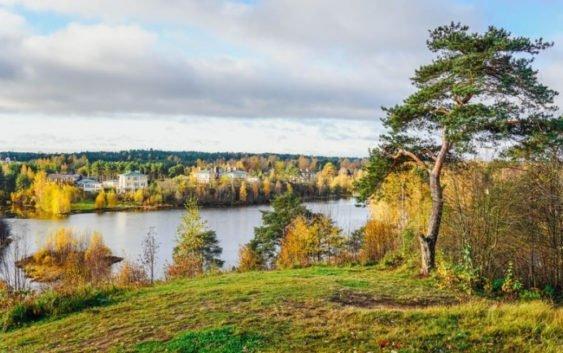 Коттеджный поселок «Озерный край»: участки у озера Вероярви