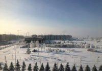 Зимняя сказка на Царскосельских холмах