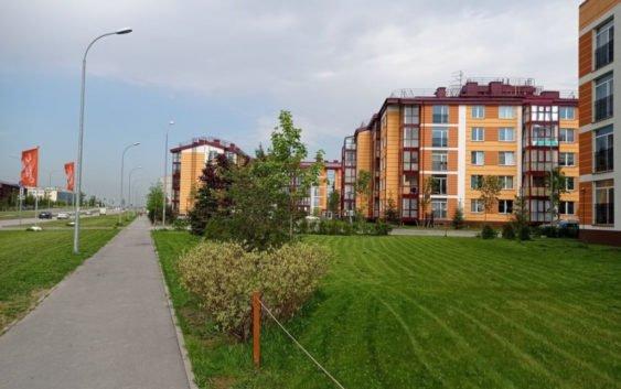 В Петербурге продолжает развиваться проект «На Царскосельских холмах»