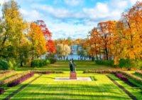Царскосельская осень: красота вокруг нас
